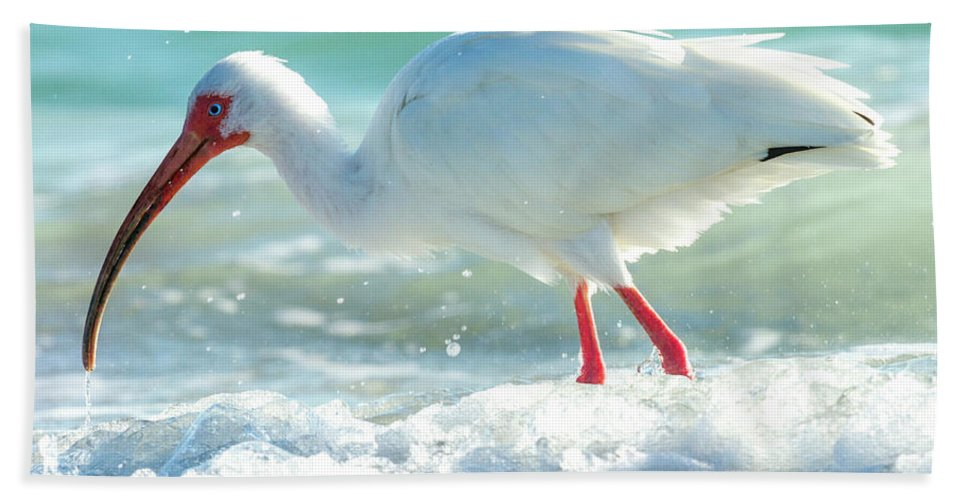 Ibis Beach Towel featuring the photograph Wild Winds by Betsy Knapp