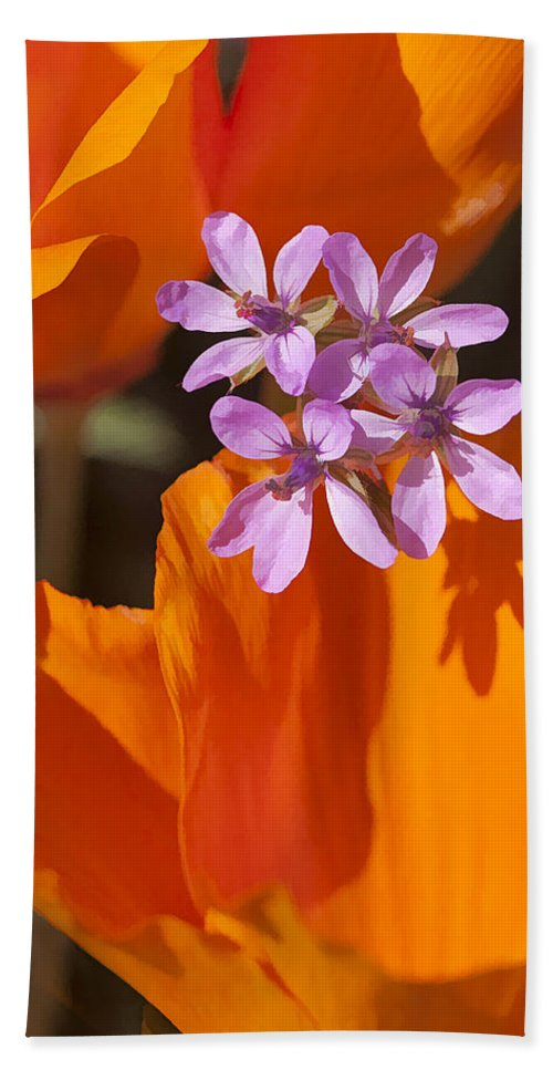 California Beach Towel featuring the digital art Wildflowers by Sharon Foster