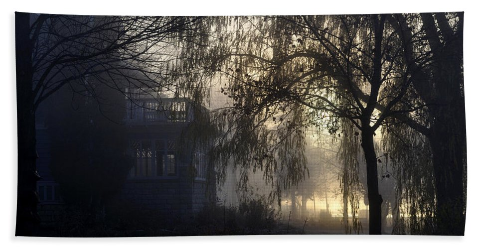 Fog Beach Towel featuring the photograph Willow In Fog by Tim Nyberg