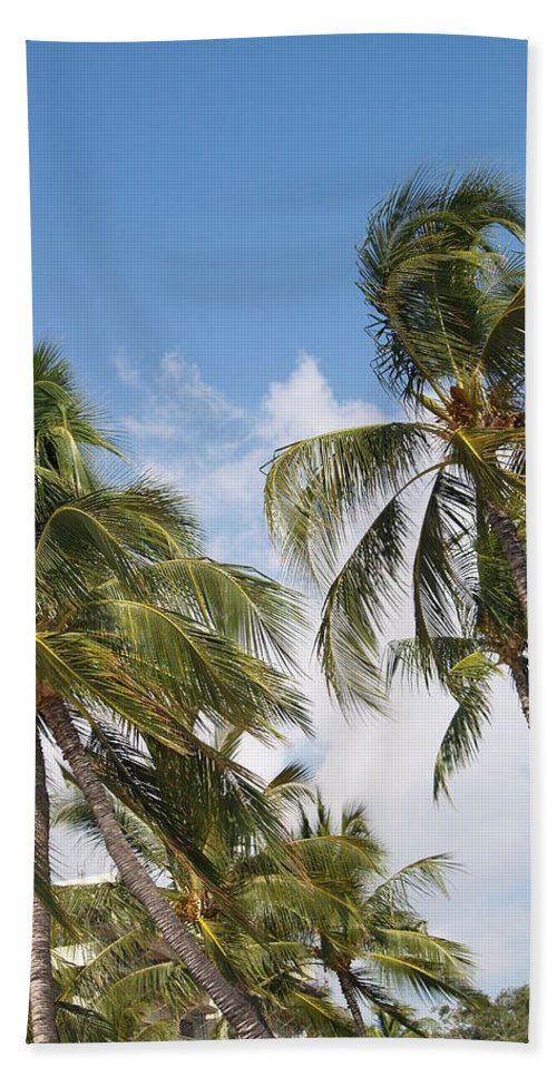 Scenic Beach Sheet featuring the photograph Wind Though The Trees by Athala Carole Bruckner