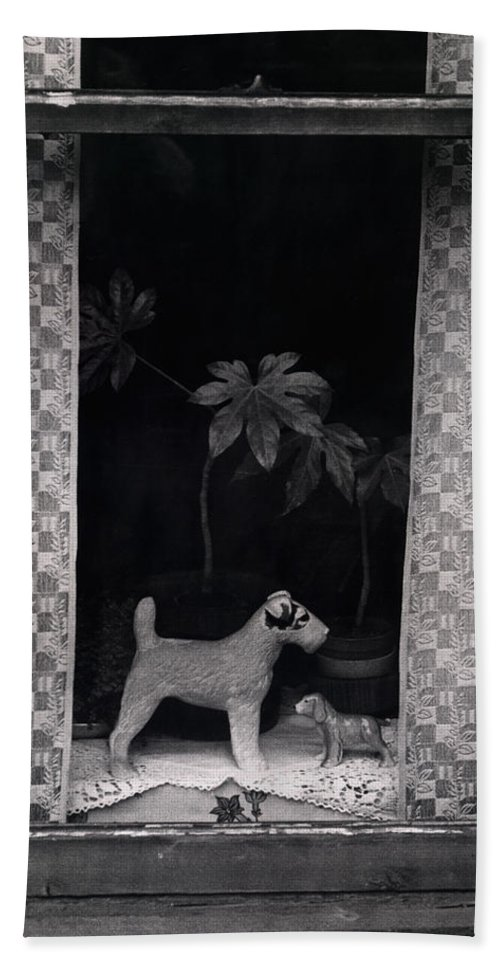 Photograph Beach Towel featuring the photograph Window Scene by Charles Stuart