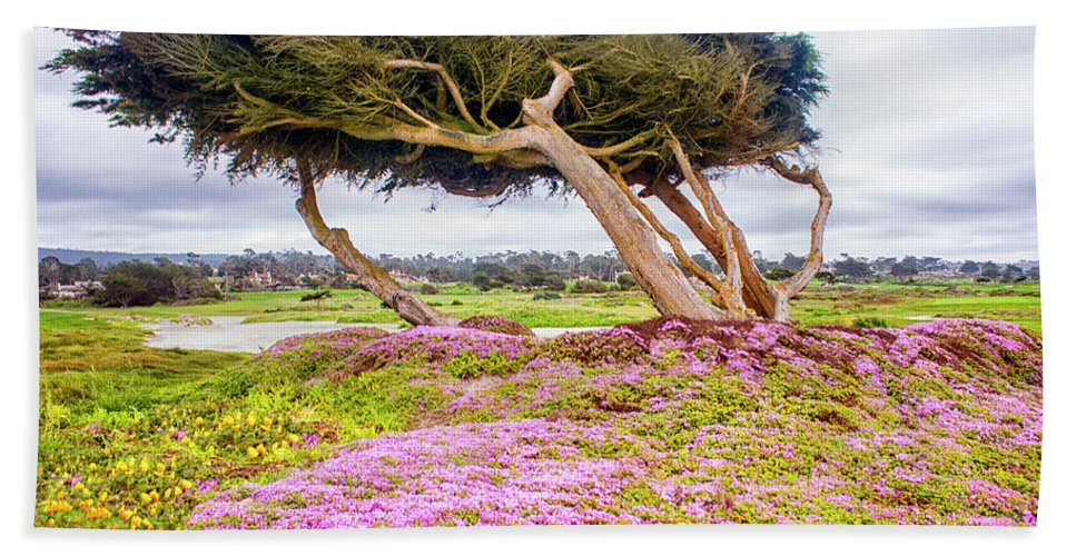 Big Sur Beach Towel featuring the photograph Windy Tree by Gabriel Jardim