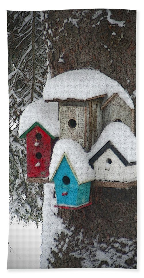 Winter Beach Towel featuring the photograph Winter Birdhouses by Tim Nyberg