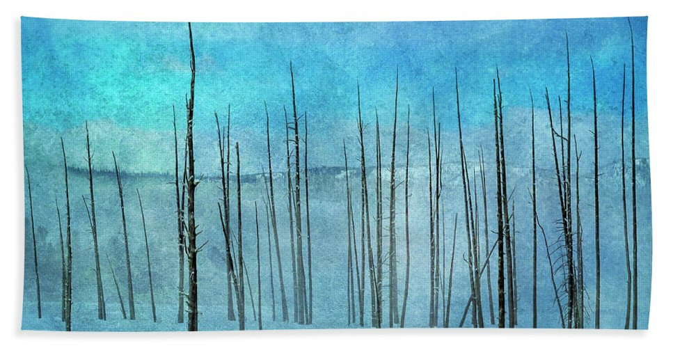 Yellowstone Beach Towel featuring the photograph Winter Blues 7913 by Karen Celella