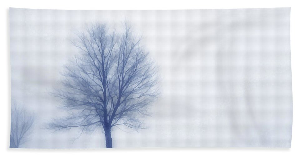 Winter Beach Towel featuring the digital art Winter Blues by Randy Steele