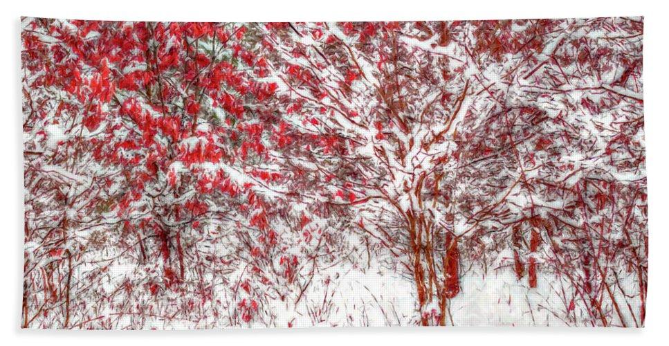Art Beach Towel featuring the digital art Winter Color by Randy Steele