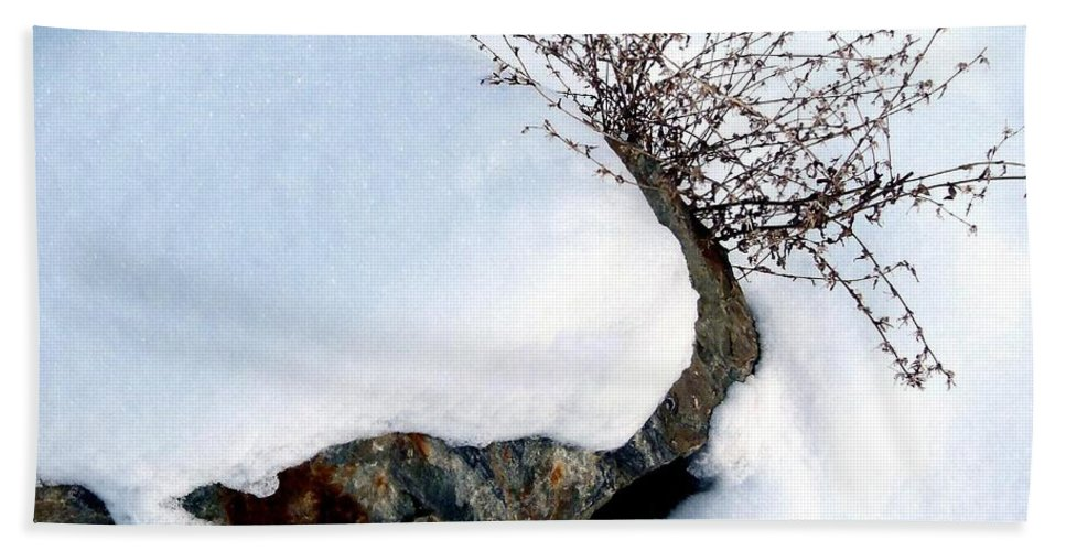 Winter Beach Towel featuring the photograph Winter Finery by Will Borden