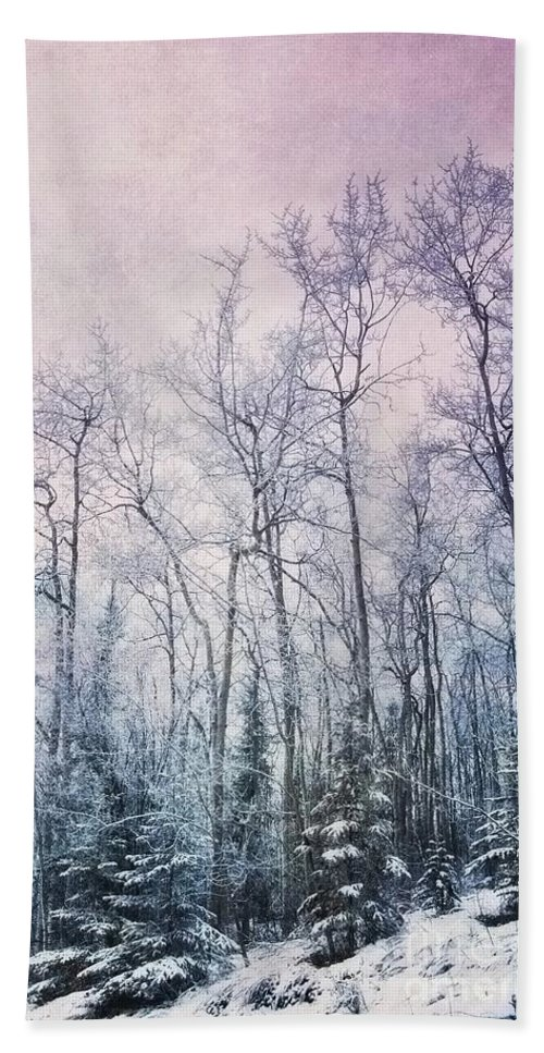 Forest Beach Towel featuring the photograph Winter Forest by Priska Wettstein