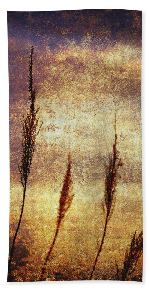 Abstract Beach Towel featuring the photograph Winter Gold by Skip Nall