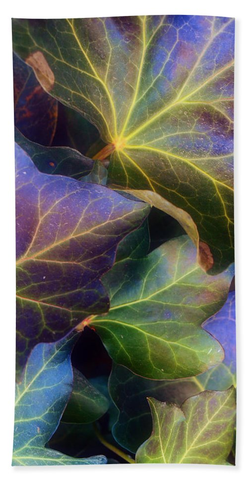Leaves Beach Towel featuring the photograph Winter Leaves by Tara Turner