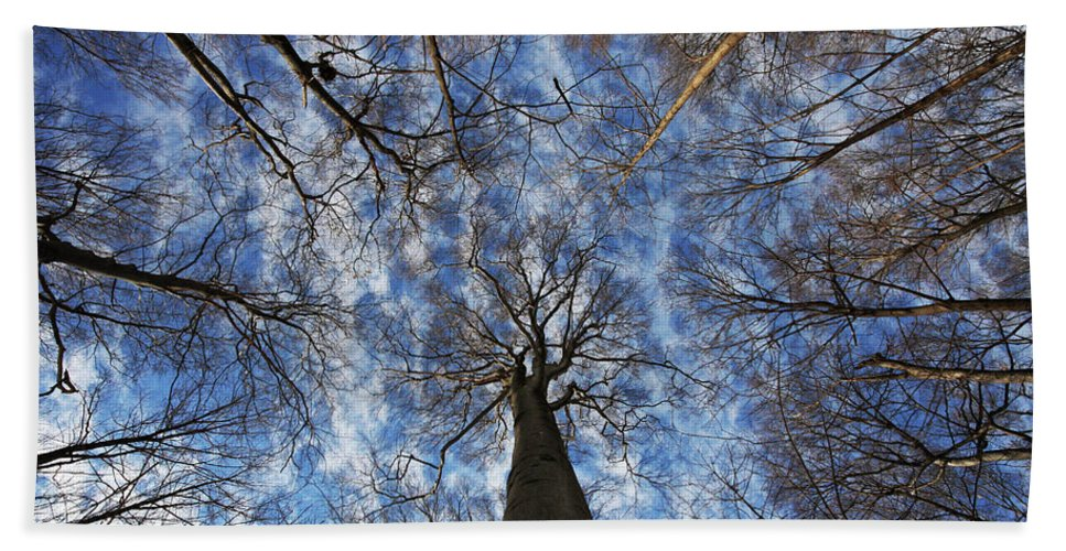 Botany Beach Towel featuring the photograph Winter Sky by Mircea Costina Photography