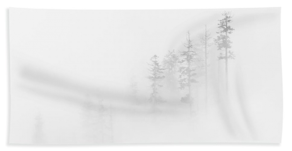 Winter Beach Towel featuring the photograph Winter Veil by Mike Dawson