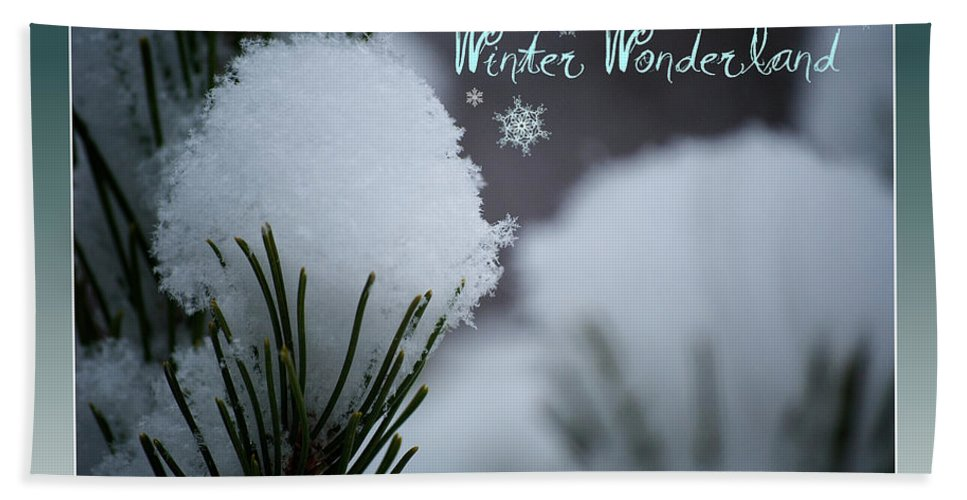 Winter Beach Towel featuring the photograph Winter Wonderland by Lisa Knechtel