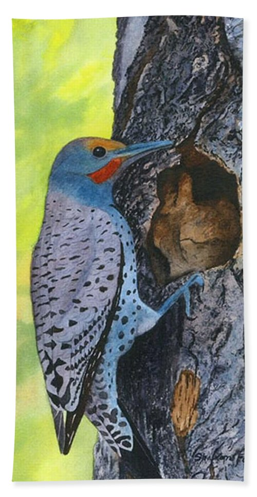 Woodpecker Beach Towel featuring the painting Woodpecker by Sharon Farber