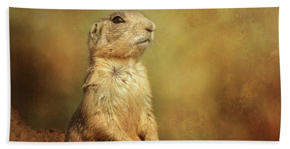 Wyoming Beach Towel featuring the photograph Wyoming Prairie Dog by Lin Myriadelle Youngblood