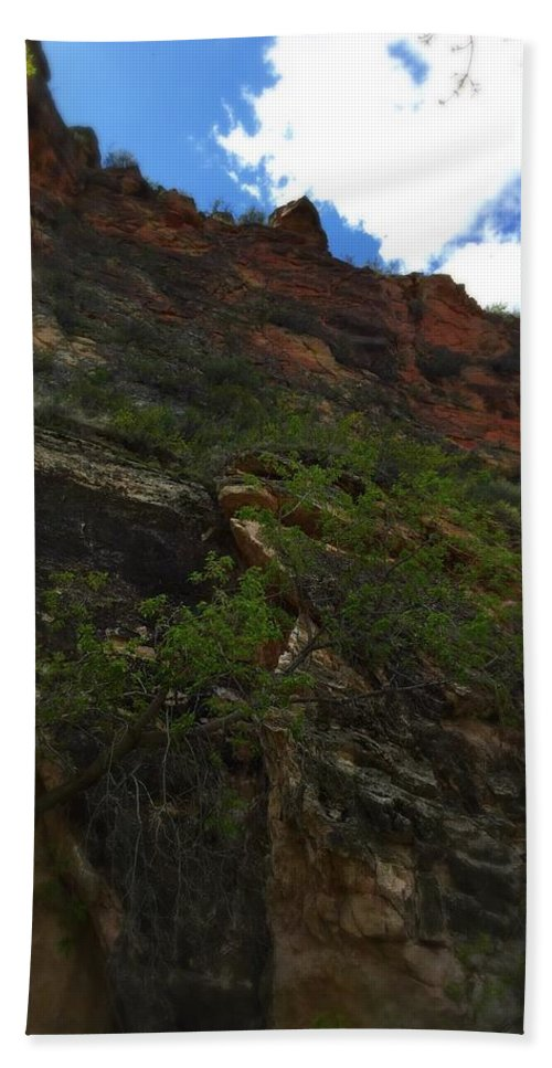 Tree Beach Towel featuring the photograph Wyoming Red Rocks by Sarah Jane Thompson