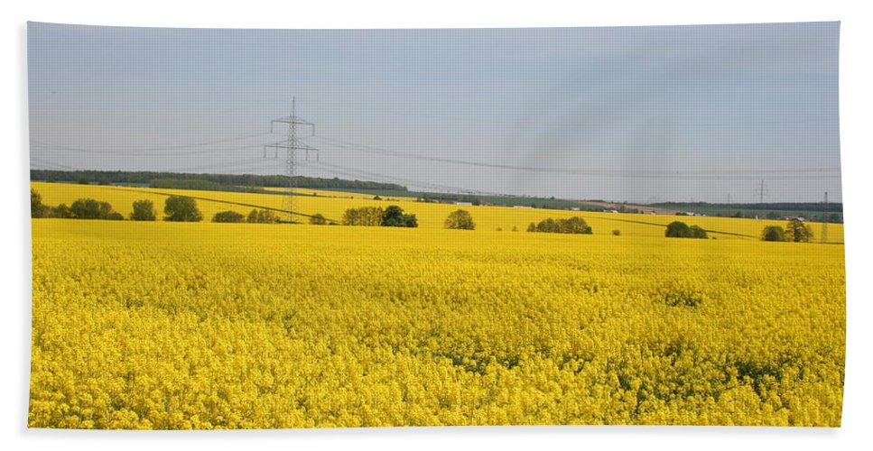 Canola Field Beach Towel featuring the photograph Yellow Canola Field by Christiane Schulze Art And Photography