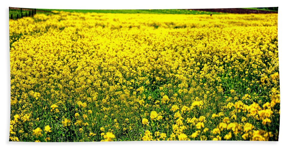 Flowers Beach Towel featuring the photograph Yellow Field by Bill Cannon