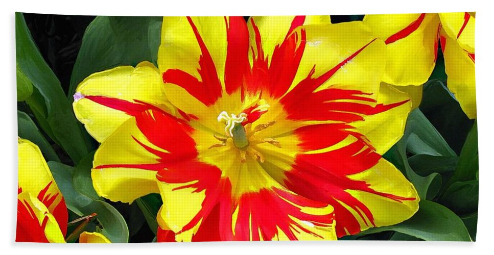Flower Print On Canvas Beach Towel featuring the painting Yellow Red Flower by Susanna Katherine