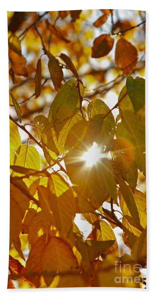 Leaves Beach Towel featuring the photograph Yellow by Rick Monyahan