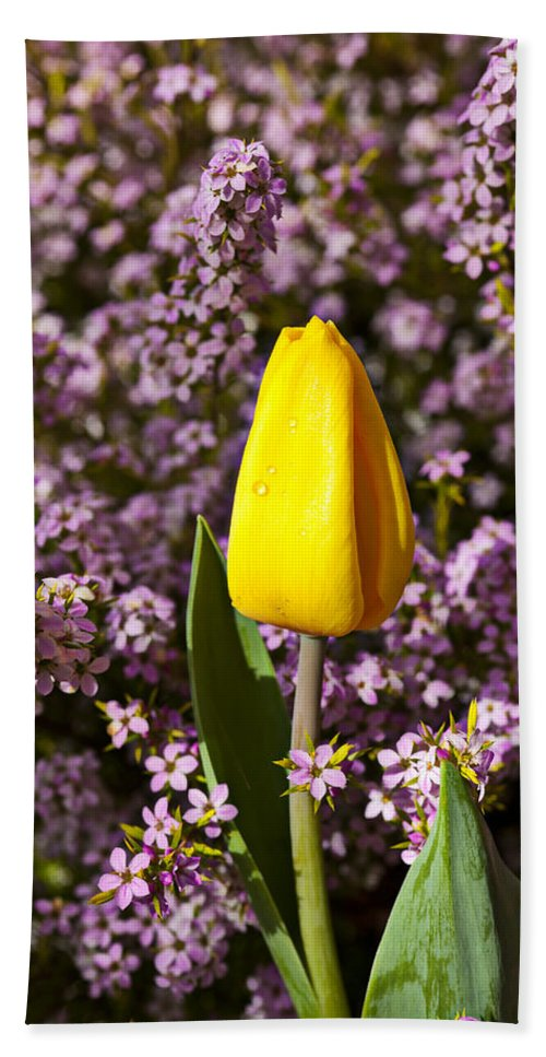 Single Yellow Beach Towel featuring the photograph Yellow Tulip In The Garden by Garry Gay