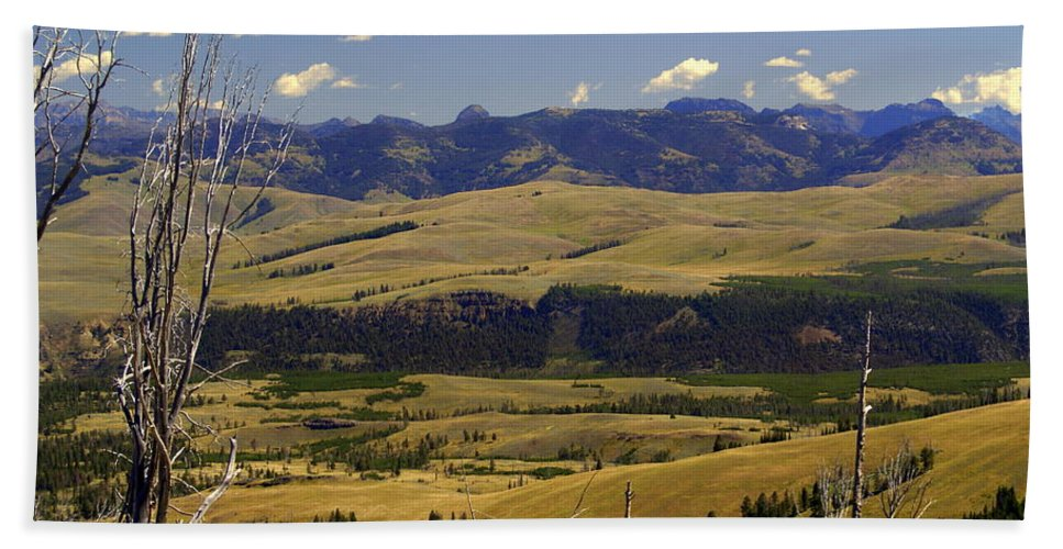 Yellowstone National Park Beach Towel featuring the photograph Yellowstone Vista by Marty Koch
