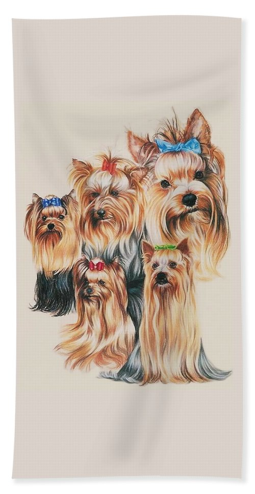 Purebred Beach Towel featuring the drawing Yorkshire Terrier by Barbara Keith