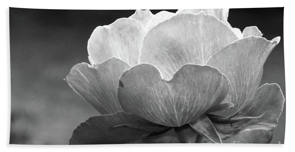 Rose Beach Towel featuring the photograph Your Are Beautiful by Christiane Schulze Art And Photography