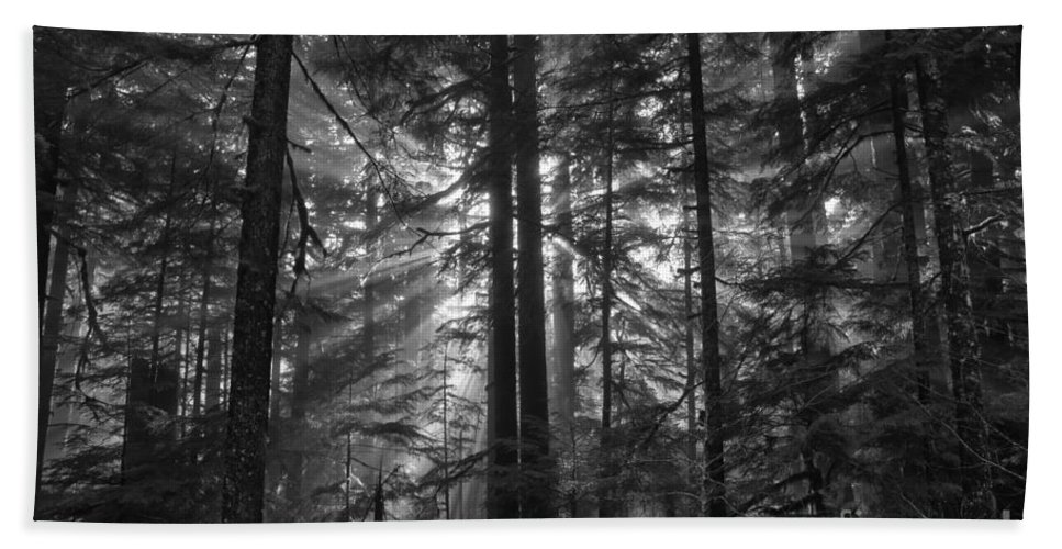 Beach Towel featuring the photograph z by Adam Jewell