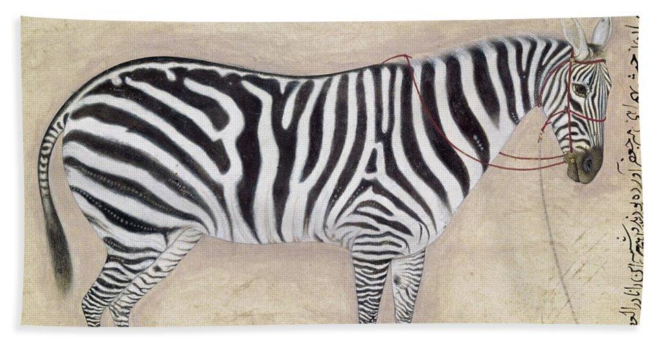 1620 Beach Towel featuring the photograph Zebra, C1620 by Granger