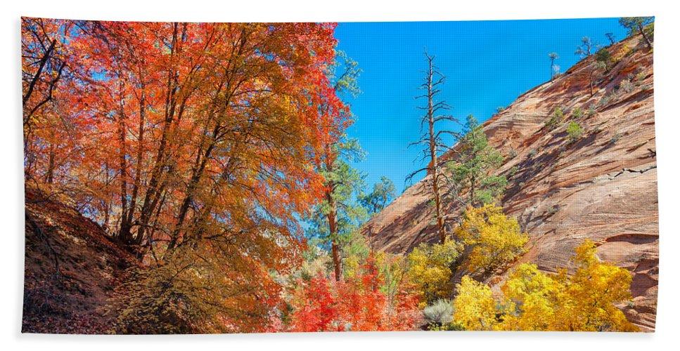Landscape Beach Towel featuring the photograph Zion Autumn Colors by John M Bailey