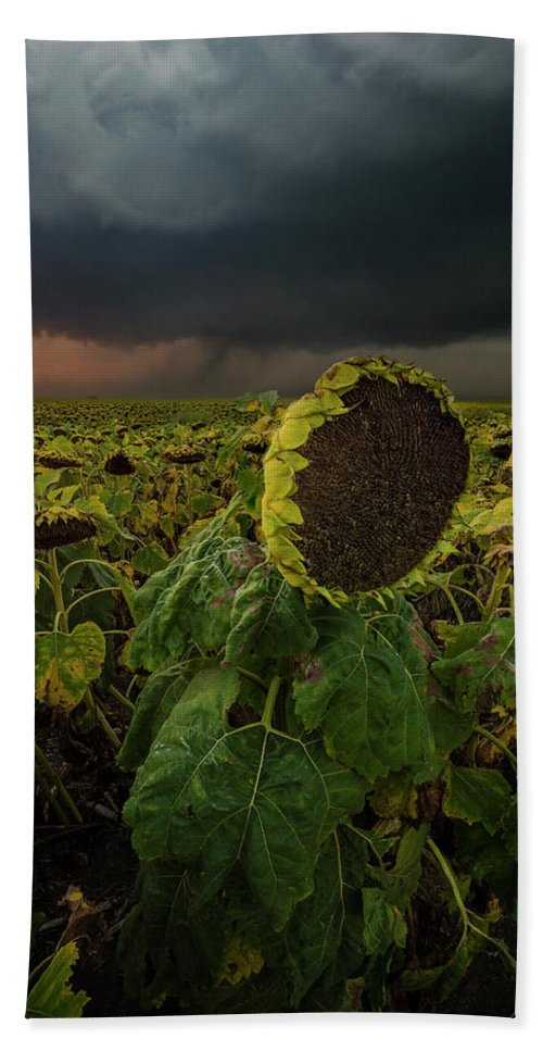 Tornado Beach Towel featuring the photograph Twisted 1 by Aaron J Groen