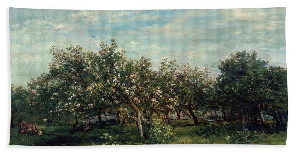 Charles-francois Daubigny Beach Towel featuring the painting Apple Blossoms by Charles Francois Daubigny