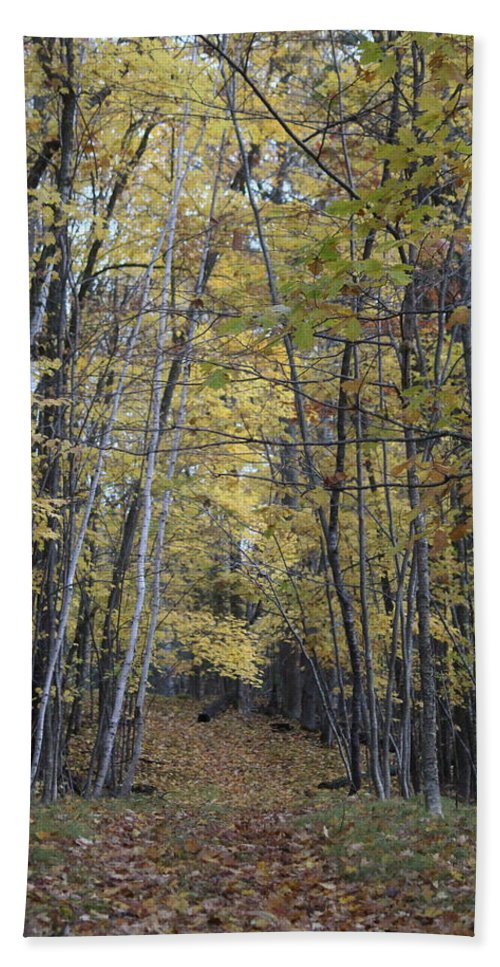 Lake Amnicon Beach Sheet featuring the photograph Autumn Morning, Lake Amnicon by Callen Harty