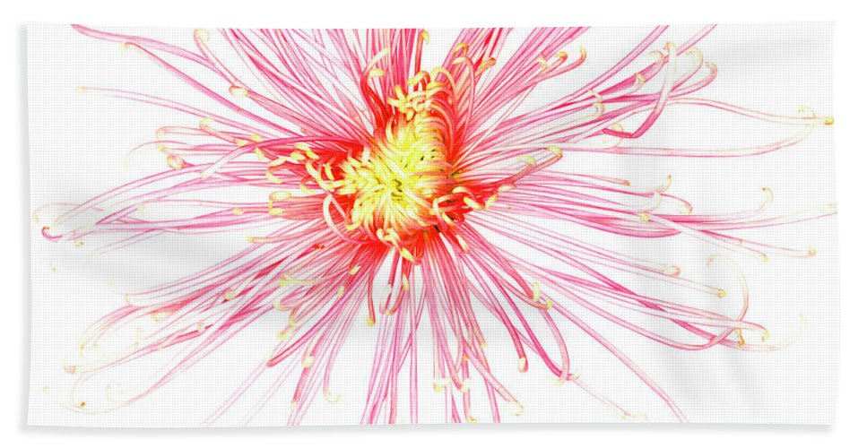 Biological Beach Towel featuring the photograph B760/1832 by Science Photo Library