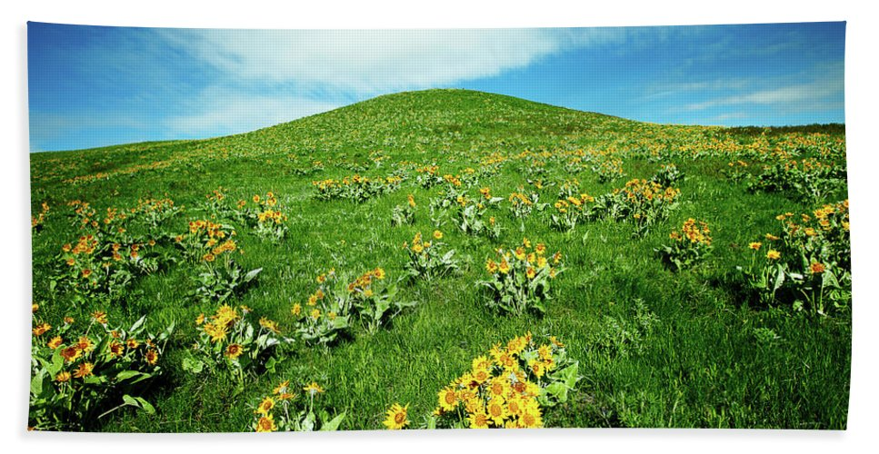 Yellow Beach Towel featuring the photograph Beaver Creek Flowers by Todd Klassy