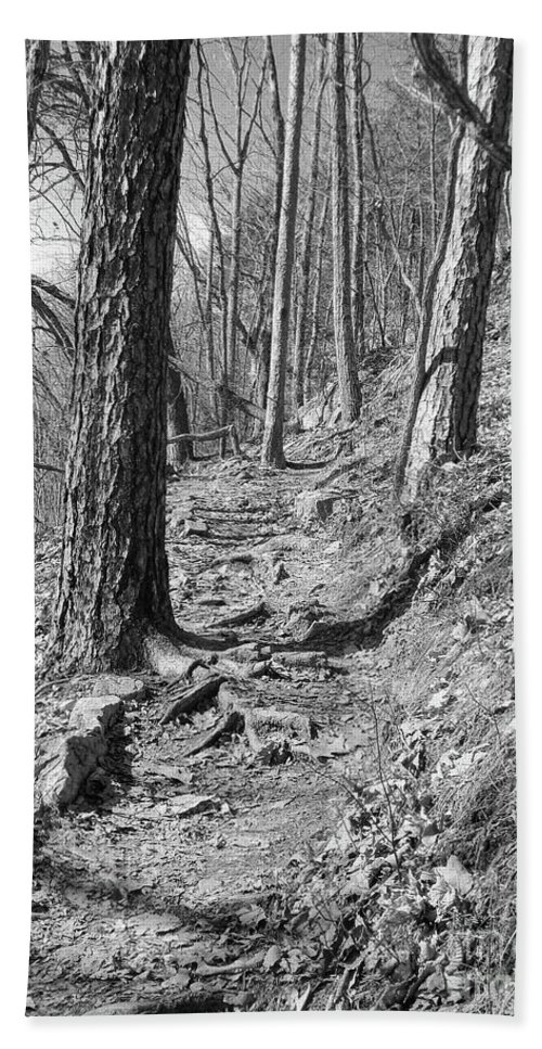 Black And White Beach Sheet featuring the photograph Black And White Mountain Trail by Phil Perkins