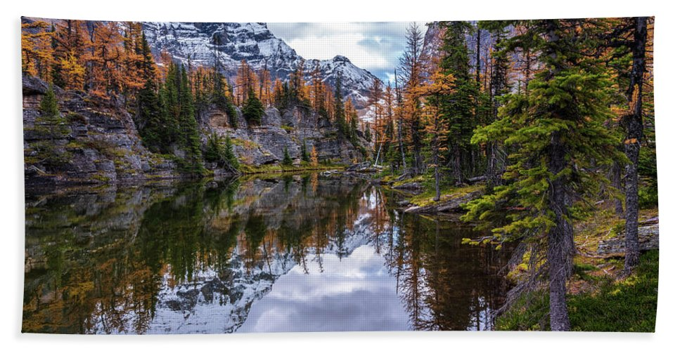 Alpine Lakes Beach Towel featuring the photograph Canadian Rockies Fall Colors Reflection by Mike Reid