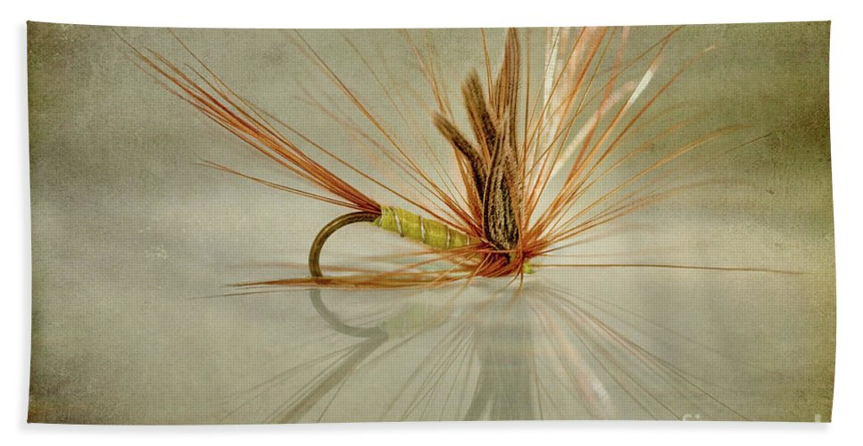 Trout Fishing Fly Beach Towel featuring the photograph Greenwells Glory Dry Fly by John Edwards