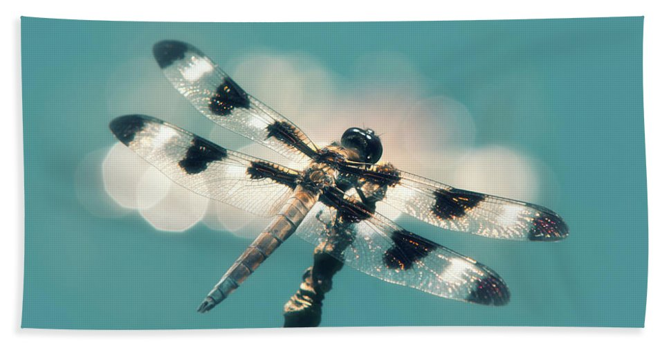 Dragonfly Beach Towel featuring the photograph Luminous Dragonfly by Christina Rollo