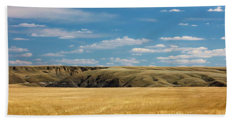 Landscape Photography Beach Towel featuring the photograph Mixing Landscapes by Todd Klassy