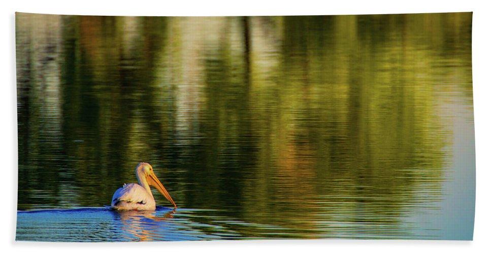 American White Pelican Beach Sheet featuring the photograph Pelican In Sunlight by John De Bord