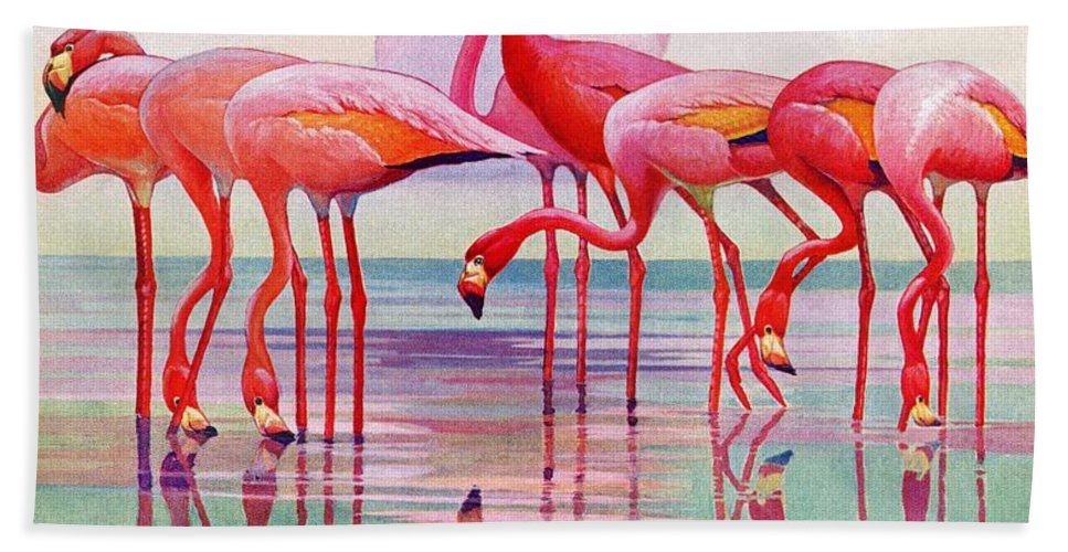 Birds Beach Towel featuring the drawing Pink Flamingos by Francis Lee Jaques