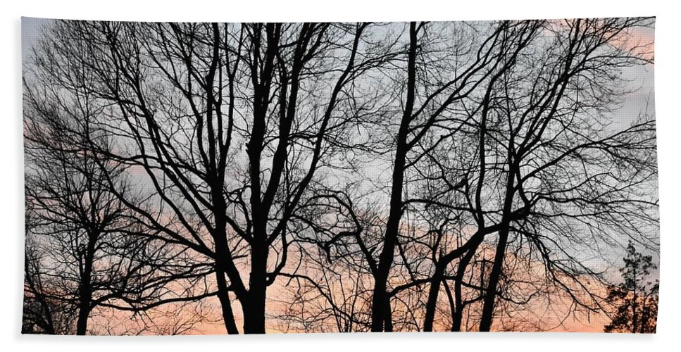 Trees Beach Towel featuring the photograph Pink Sky by Cassidy Marshall
