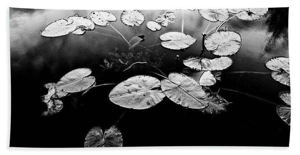 Black & White Beach Sheet featuring the photograph Stillness by Scott Pellegrin