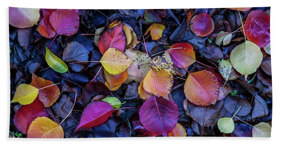 Autumn Leaves Beach Towel featuring the photograph Summer Leaves by Az Jackson