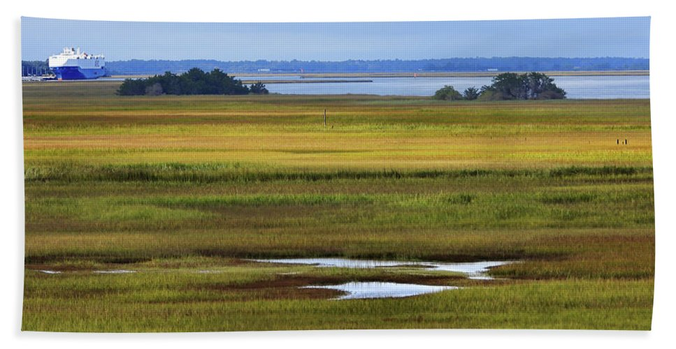 Sidney Lanier Bridge Beach Towel featuring the photograph View From The Bridge by Laura Ragland