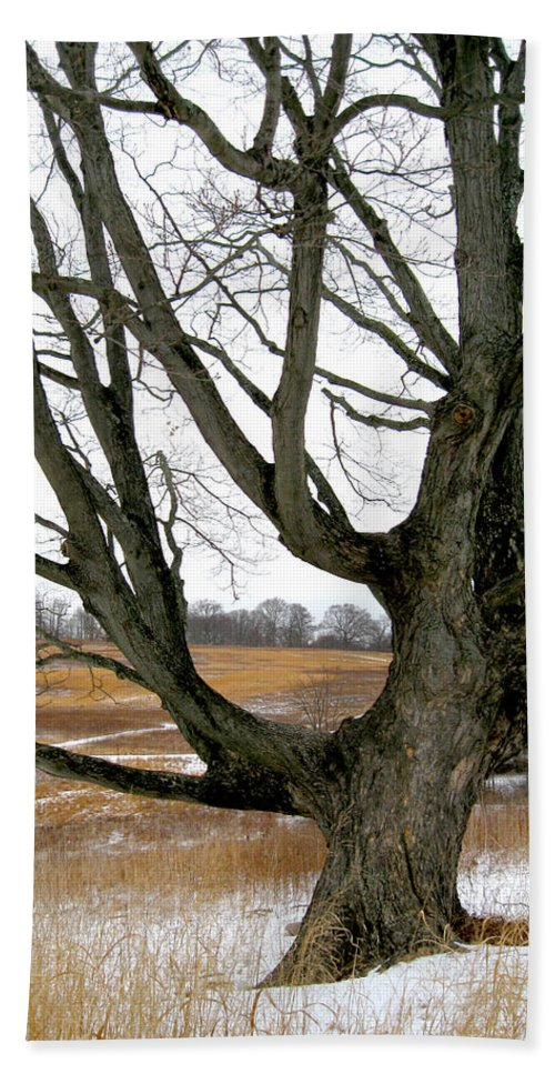 Southern Beach Towel featuring the photograph Wyeth Country by Gordon Beck