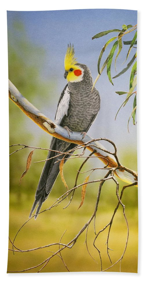 Bird Beach Towel featuring the painting A Friendly Face - Cockatiel by Frances McMahon