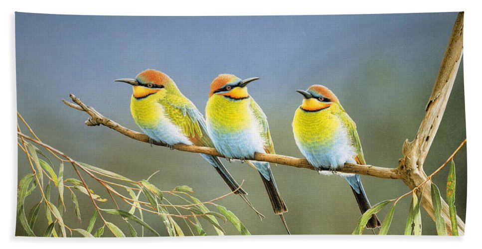 Bird Beach Towel featuring the painting Afternoon Repose - Rainbow Bee-Eaters by Frances McMahon